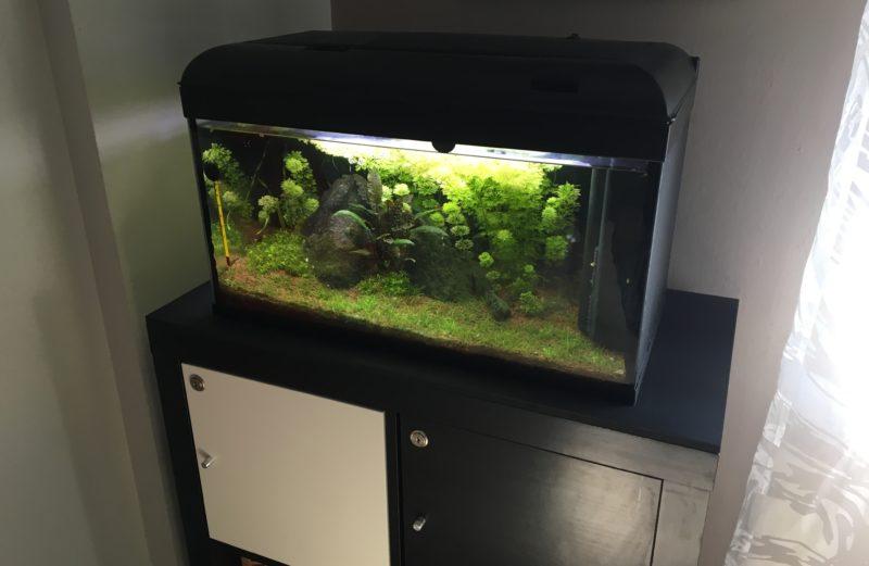 Armadio Per Acquario Ikea