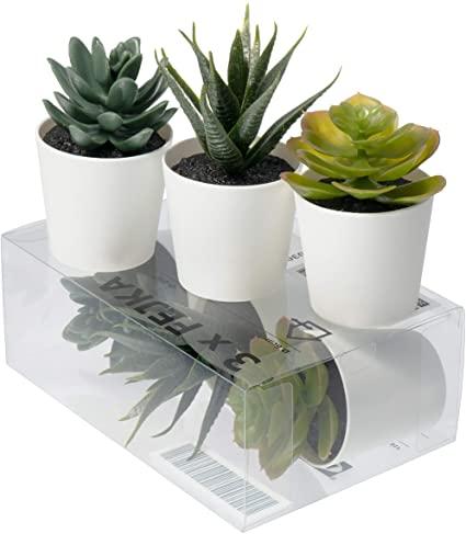 Cactus Artificiale Ikea