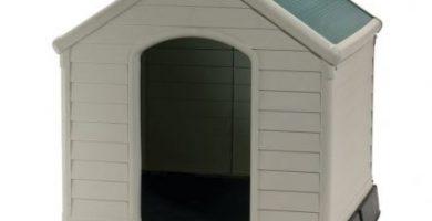 Cuccia Per Cani Bricocenter