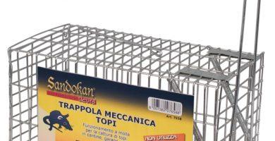 Trappola Per Topi Leroy Merlin