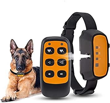 Collare Elettrico Per Cani Amazon