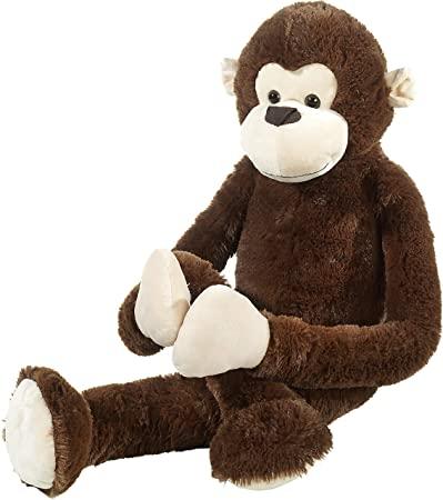 Scimmia Scimmia Amazon